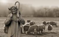 LAUDATE DOMINUM - Psalmvertonungen
